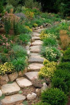Wildpflanzen koppeln mit grob geschnittenen Steine und Treppen perfekt. Wenn eine robuste und rustikale aussehen soll, ist dies eine Paarung, die für Sie arbeiten.