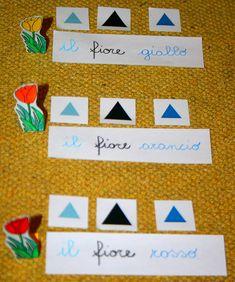 Psicogrammatica Montessori: esperienze chiave sull'aggettivo – Lapappadolce Montessori, Language Arts, Logos, Logo, Language