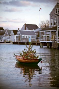One of the cutest pictures I have ever seen! Have yourself a merry Nantucket Christmas One of these years.I'm going to go to the Christmas Stroll! Nautical Christmas, Outdoor Christmas, Beach Christmas, All Things Christmas, Christmas Holidays, Christmas Trees, Merry Christmas, Christmas Markets, Christmas Kitchen