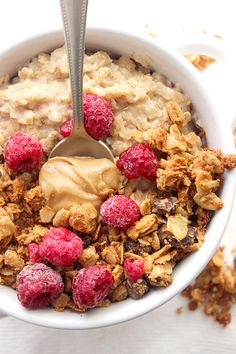 Chewy Chocolate Chip Granola