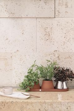 Playing with the contrasting textures of terracotta, stainless steel and the green foliage from the plants within, this striking set of three pots and a tray brings a contemporary look to the world of gardening. The set of three pots is versatile, and makes a great display with flowers on a balcony or arranged as a fresh row of herbs in the kitchen. This planter set makes the perfect gift for the home gardener. Burke Decor, Home Decor Vases, Tray, Aesthetic Design, Stainless Steel, Settings, Pot Sets, Steel, Terracotta
