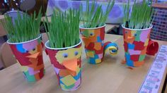 Rairuohoastia kertakäyttömukista Classroom Projects, Projects For Kids, Art Projects, Why Try, Easter Crafts For Kids, Sparklers, Kindergarten, Planter Pots, Recycling