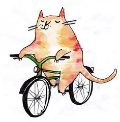 Emily Fox Illustration: Cats on Bicycles.