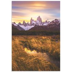 Metal Art Studio Fitz Roy at Golden Hour Wall Art - X1132584AC