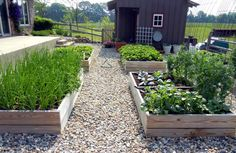 Reasons To Garden /Awesome FREE Garden Planner | Deep Roots at Home