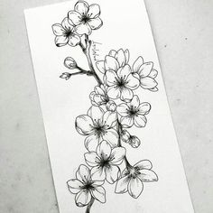 Wonderful Photos drawing flowers sakura Strategies Blossoms are NOT effortless to draw! Well-executed floral pen-drawings are generally winner upon a number of myspace an Tattoo Drawings, Body Art Tattoos, Art Drawings, Pencil Drawings, Tatoos, Flower Sketches, Art Sketches, Drawing Flowers, Flower Drawings