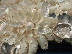 sea shellmirror designs | Sea Shell Mirror and Photo Frames - Wedding Belles & Sea Shells