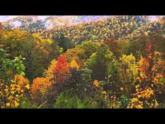 Geography of North America-Video | Leverett World Geography