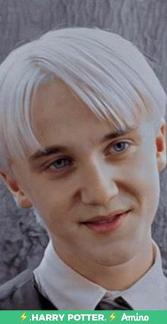 Draco Harry Potter, Mundo Harry Potter, Harry Potter Tumblr, Harry Potter Characters, Harry Potter Pictures, Tom Felton, Hogwarts, Slytherin, Draco Malfoy Aesthetic
