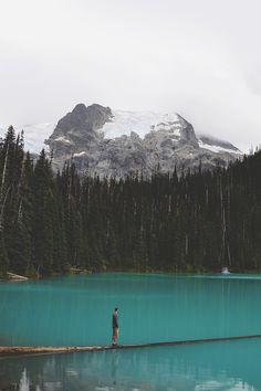 RAMBLIN' FOOL (envyavenue:   Glacier Waters)
