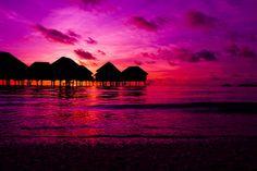 Purple.♥