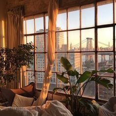 i just want to have our own cute little apartment with big windows and bake fresh banana bread every morning and have lots of plants everywhere and read lots of books and go on adventures with friends and watch sunsets from our rooftop...