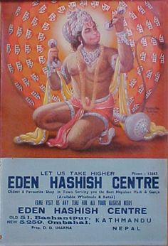 Eden Hashish