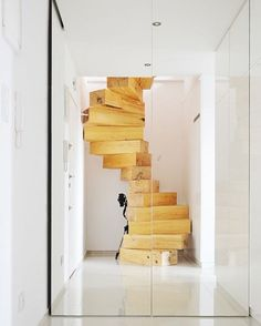 858 отметок «Нравится», 5 комментариев — Compact Living (@compactliving) в Instagram: «Wooden Spiral Stairs concept by architect Lucjan Kuc #interiors #interiordesign #architecture…»