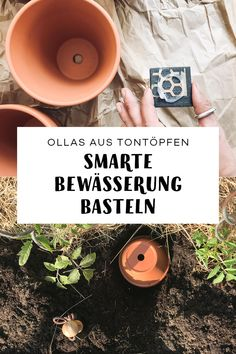 Tomaten (fast) ohne Gießen Garden irrigation for the holidays or allotments. In this DIY tutorial yo Diy Garden Projects, Diy Garden Decor, Garden Ideas, Irrigation, Growing Plants, Growing Vegetables, Permaculture, Water Garden, Garden Plants