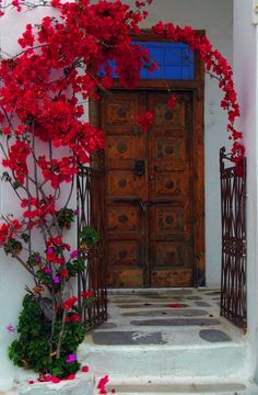 What could feel more welcoming than this beautiful red bougainvillea growing around the doorway to this residence - the colour red immediately gives you the feeling of warmth and the sturdy door conveys safety beyond the threshold. Old Doors, Windows And Doors, Deco Nature, Diy Inspiration, Unique Doors, Grand Entrance, Spanish Style, Spanish Colonial, Spanish Revival