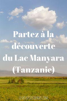 Récit de voyage : venez découvrir lors d'un superbe safari en Tanzanie, le parc National du Lac Manyara. Superbe parc où vous découvrirez toute la faune locale et une multitude d'animaux typiques de la savane (lion, girafe, buffle, éléphants, etc.)