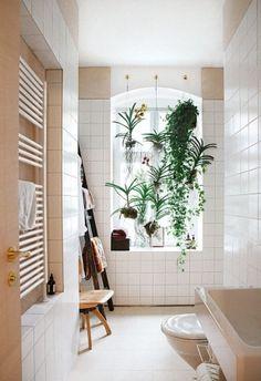 Salle de bain avec rideau de plantes