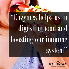 """""""ENZYME FACTS"""" Enzymes are a complex essential part of our body which  helps us in digesting food and boosting our immune system  Visit http://www.kaliandrasejati.org/wellness/enzyme/ for more information of the Healthy Living the Kaliandra way  #wellness #healthyliving #retreat #wedding #kaliandra #resort #prigen #pasuruan #kaliandra #kaliandra_sejati #ecoresort #mountain #wellness #traveling #visitindonesia #indonesia #resort #nature #organicfarm #hotel #passion #holiday #vacation #live"""