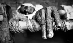 The Life Of Longevity ©vicasso by Vikas Tiwari on 500px