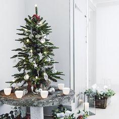 Fir Christmas Tree - 3ft   The White Company