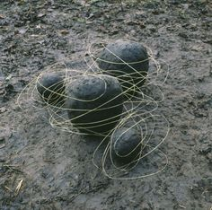 Andy Goldsworthy Grass Stalk Line and Mud Covered Rocks, Cumbria 1984