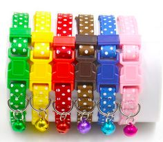 Cat/Dog collars only $3.99 shipped
