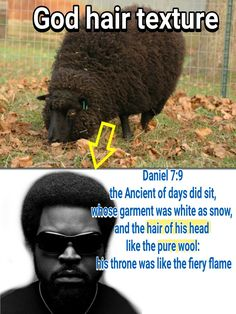 How low they must think of Your intellect. To try and say the picture that they have been placing in Churches, and homes for years is one and the same .and expect you to believe it. Learn Hebrew Online, Black Hebrew Israelites, Black History Books, 12 Tribes Of Israel, Tribe Of Judah, Vtc, Knowledge And Wisdom, Black Pride, African American History