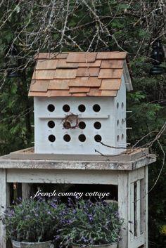 Build make create design birdhouse birds homes Cedar shingles big huge large