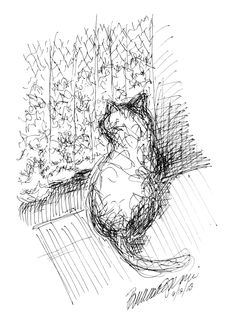 Daily Sketch: Looking Through the Curtain