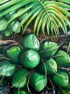 Green Coconuts 3