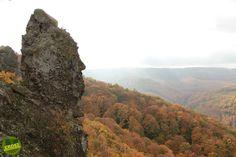 Vadálló-kövek, Visegrádi-hegység Erdeiprogramok.hu - Élményekben gazdag magyar erdők 1 Day Trip, Merida, In This Moment, Mountains, Water, Travel, Outdoor, Gripe Water, Outdoors