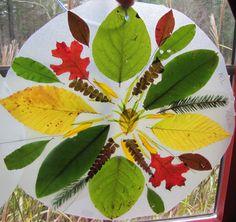 Fall Mandala Craft - just beautiful! Autumn Crafts, Autumn Art, Nature Crafts, Nature Activities, Autumn Activities, Land Art, Theme Nature, Nature Table, Art Nature