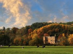 Bickleigh Castle | Romantic Wedding Venue in Devon