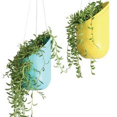 "DIY hanging planters - (the link is for purchasing) - this is easily a DIY project - made with two liter soda bottles painted and holes punctured and threaded with fishing line, or even ""jump rings"" through the holes and decorative chain to hang with.  So cool!"