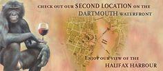 The Wooden Monkey Restaurant Grow Organic, Dartmouth, Best Places To Eat, Nova Scotia, Monkey, Restaurants, Travel, Food, Viajes