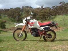Yamaha SR500 Forum  #motorcycles