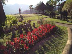 ChiangMai - Fantastic stopover when travelling to Koh Samui Ko Samui, Samui Thailand, Chiang Mai Thailand, Bangkok, Laos, Travelling, Villa, June, Heart