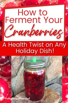 Here's how I fermented my cranberries, how they turned out (delish!), and also how I used these red beauties. You'll love this easy, unique, healthy recipe for using your cranberries in a ferment! #fermentedcranberryrecipe #howtoferment #healingharvesthomestead How To Stay Healthy, Healthy Life, Fermentation Recipes, Outdoor Food, Cranberry Recipes, Emergency Food, Fresh Cranberries, Dehydrated Food, Fermented Foods
