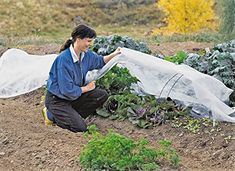 Plant Covers, x Reusable Floating Row Cover, Freeze Protection Plant Blankets for Cold Weather, Garden Winterize Cover for Winter Frost Protection, Thickened 1 oz Garden Quilt Cover Aquaponics Kit, Aquaponics Greenhouse, Gardening Supplies, Gardening Tips, Vegetable Gardening, Plant Covers, Row Covers, Sloped Garden, Garden Equipment