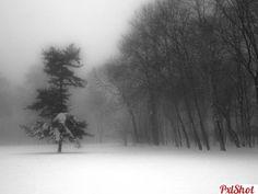 December silence   Concurs Decembrie - PxlShot.ro