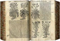 Mostra Tesori in soffitta - Biblioteca dell'Archiginnasio