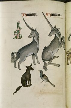 Pages from a Tudor Bestiary, 1520 | Retronaut