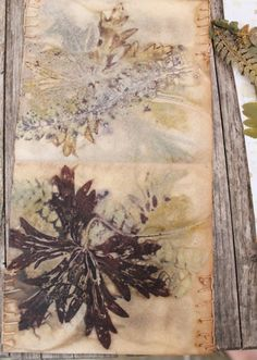 experiments with paper, cloth, earth and plant dyes