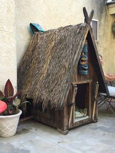 Tiki kennel More - How Crazy is This