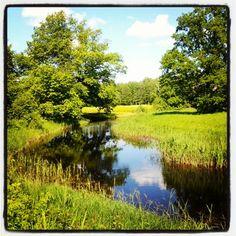 Mulgi #meadows in Soomaa Lemmjogi #river - @aivarruukel- #webstagram