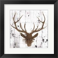 Framed Brown Deer Head