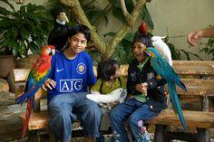 Bird Park, Kuala Lumpur.