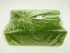 Dried Organic Reindeer Moss Green Vase Filler Planter Topping Bulk Jumbo Block