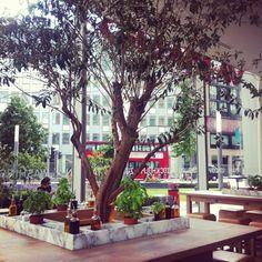 Ez a körbeülhető asztal is jó a közepén kinövő növénnyel, bár ehhez talán kicsi lenne a helyünk. Vapiano, London